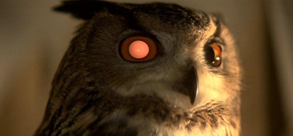 Blade Runner Owl